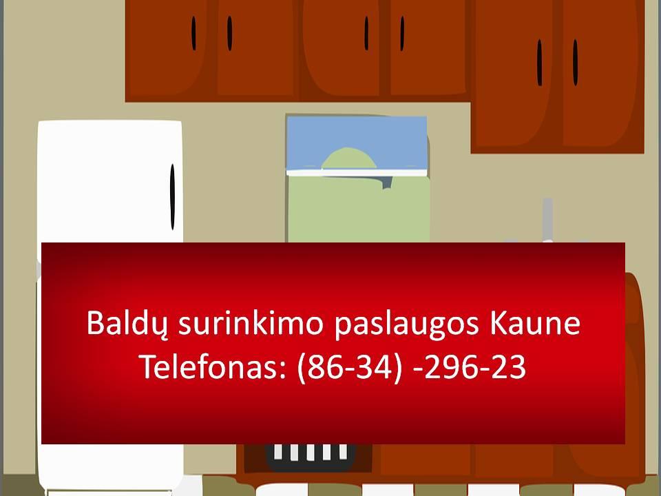 Baldu surinkimo paslaugos Kaune  863429623