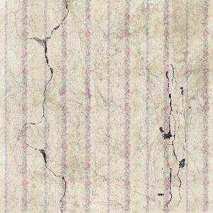 kaip nuimti senus tapetus nuo sienos
