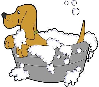 nesandari vonia Galimos priežastys kodėl nesandari vonia