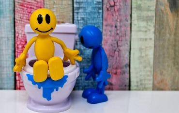užsikimšo tualetas Pagaliau tikrieji atsakymai dėl ko užsikimšo tualetas