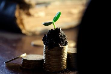 """Neverta liūdėti, tikrai neverta. Taip atsitiko laikinas nesklandumas ( vadink tai laikinu nesklandumu) nes juk tu viską darysi, jog panaikintį šį menkutį """"nesusipratimą"""" :D Taupyk laiką, ieškok gerų meistrų kurie sutaisys kai neišeina uždirbti pinigų namuose Tikros galimos priežastys dėl ko neišeina uždirbti pinigų namuose"""