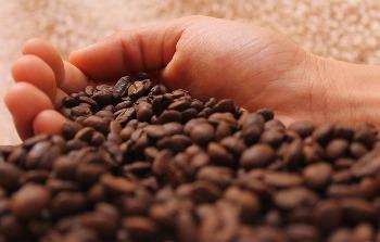 kavos pupelės kavai gaminti ir gerai nuotaika užtikrinti. Labas rytas su kava ir skanios tau šįrytą kavos. Sms tekstas apie kavą ir labą rytą