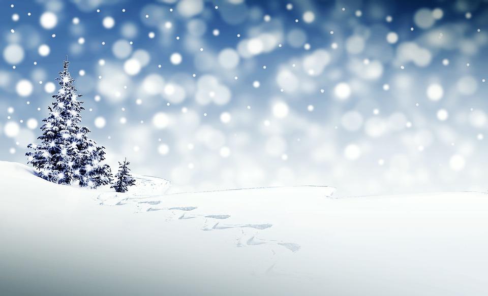 su Šv. Kalėdom! Jaukumo ir šilumos tavo namams!