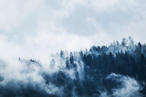 Kodėl žiema pas mus šalta kodėl, kodėl ir dar kartą kodėl Kodėl žiema pas mus šalta