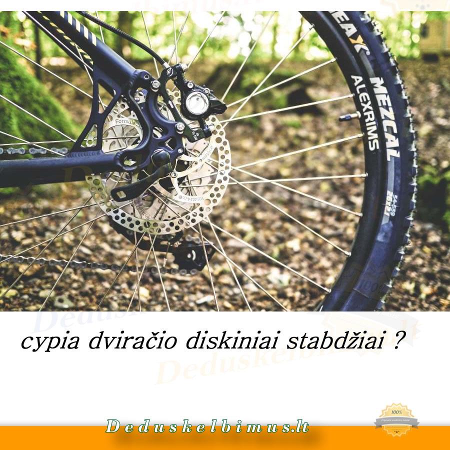 cypia dviračio diskiniai stabdžiai.jpg