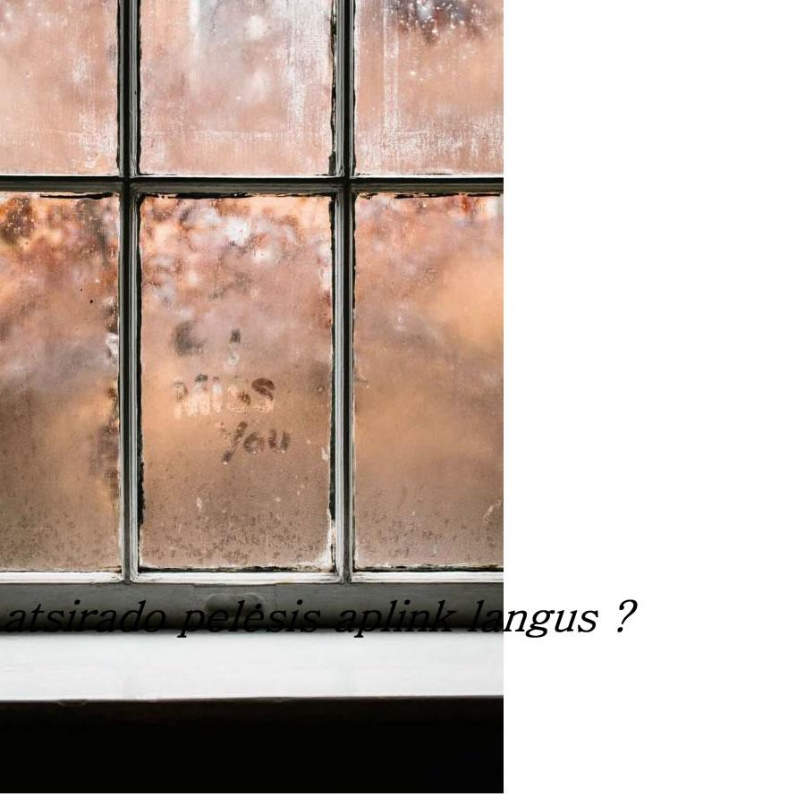atsirado pelėsis aplink langus.jpg